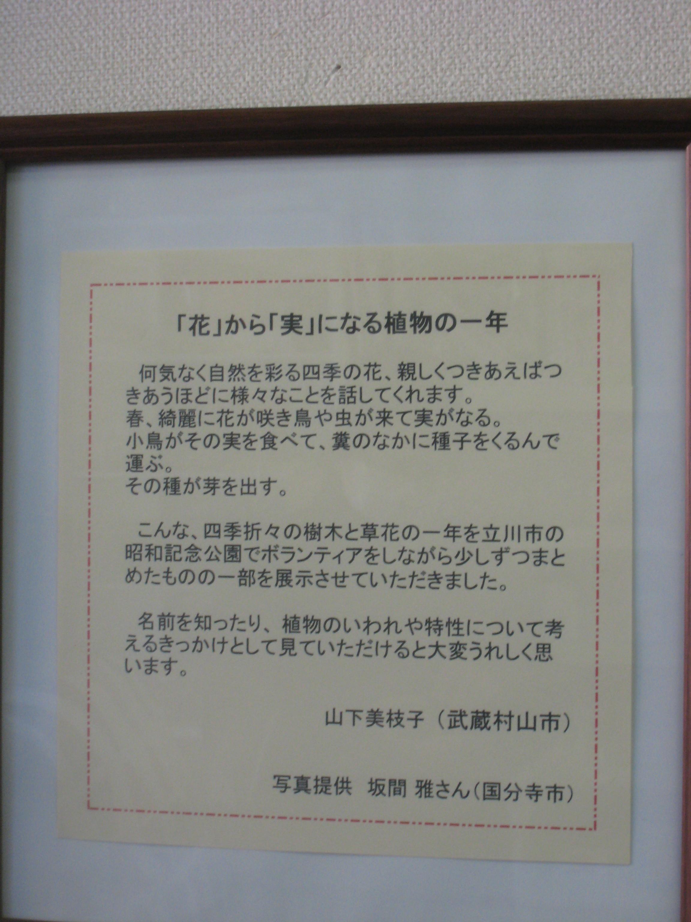 ファイル 287-1.jpg